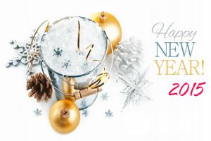 Happy-New-Year-photo-2015
